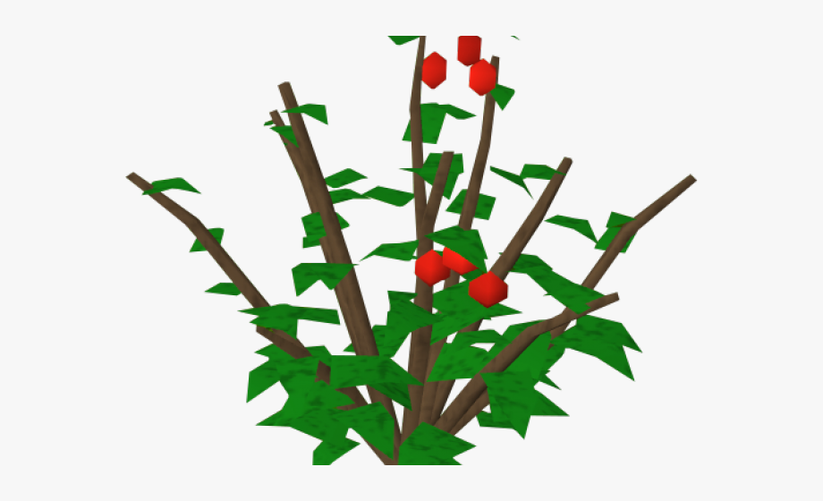 Rose bush holly free. Bushes clipart berry