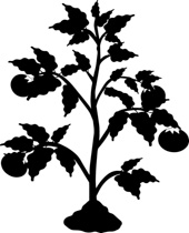 Free plants outline clip. Bushes clipart black and white