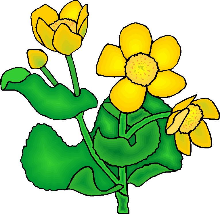 Plants free clip art. Bushes clipart cartoon