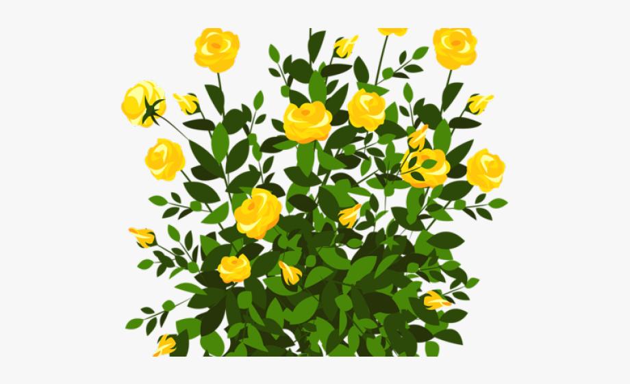 Free stock illustrations bush. Bushes clipart clip art