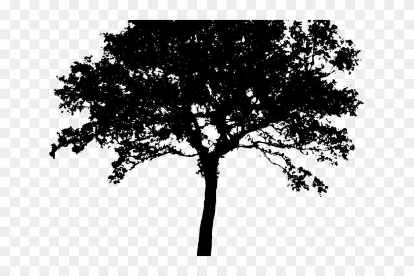 Bushes clipart clip art. Shrub oak tree hd