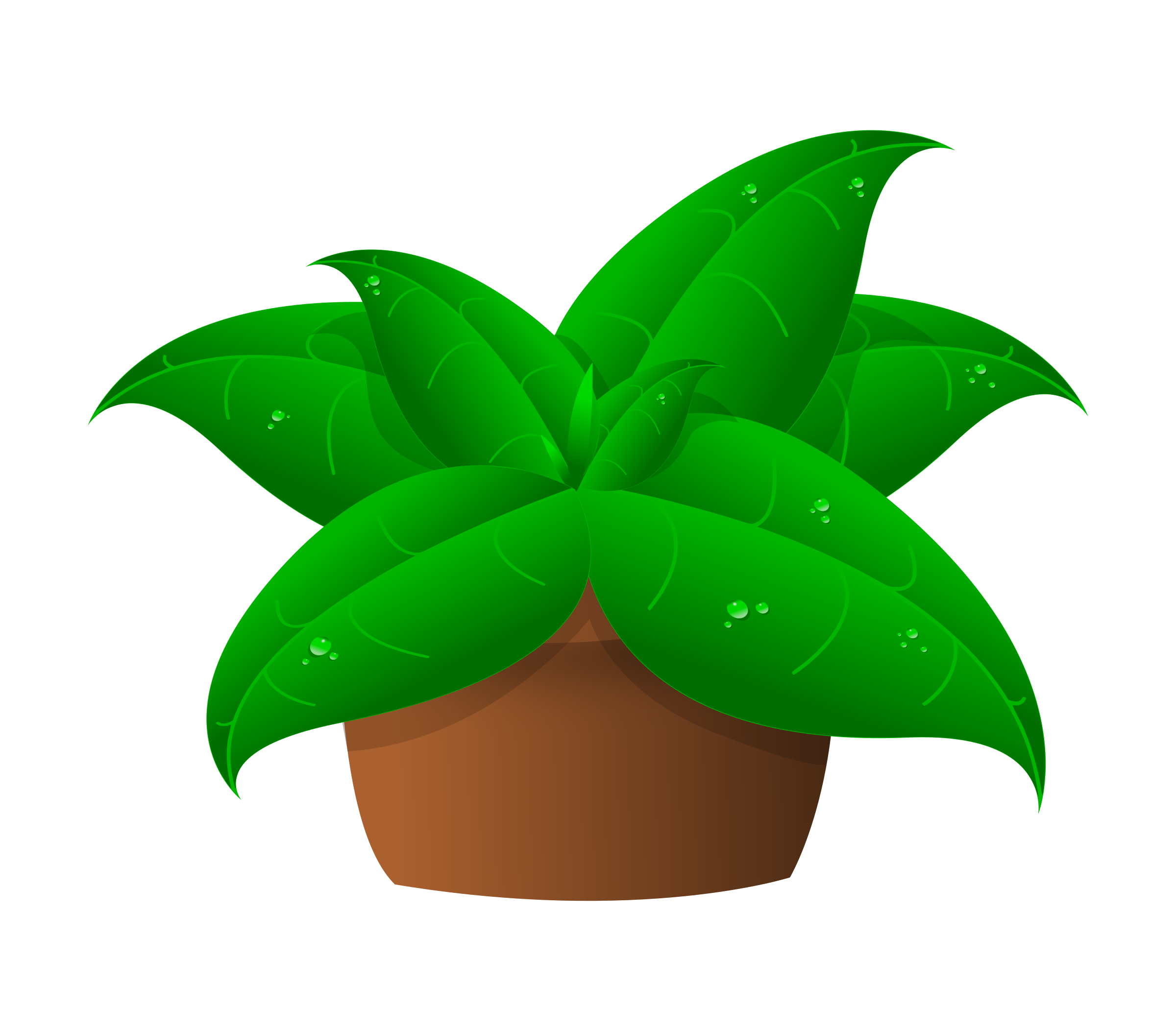 Seedling clipart plantae. Plants cilpart crafty inspiration