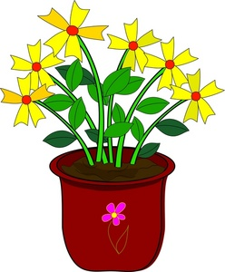 Daisies image yellow daisy. Bushes clipart flower