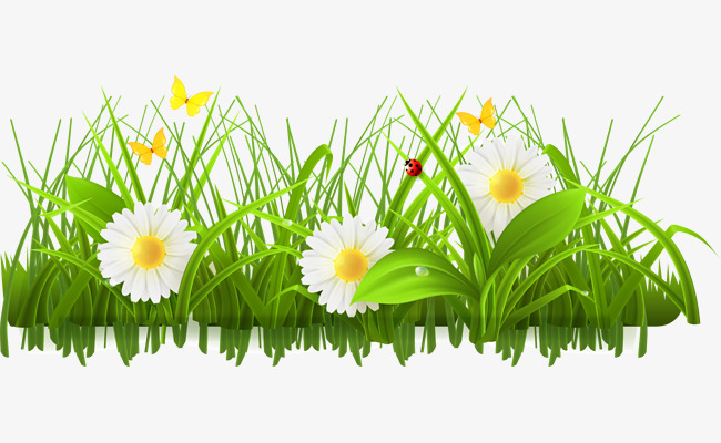 Green flowers botany png. Bushes clipart flower