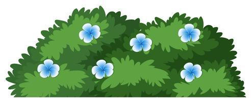 Bush free vector art. Bushes clipart flower