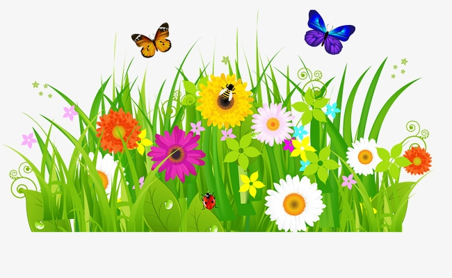 Flowers and butterflies png. Bushes clipart flower