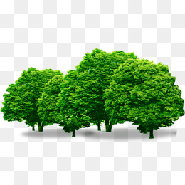 Bushes clipart forest. Png images download resources