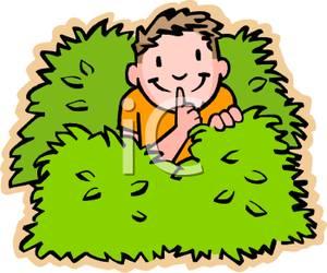 A young boy hiding. Bushes clipart fruit