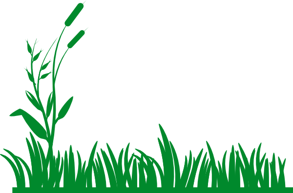 Clipart grass banner. Bush pencil and in
