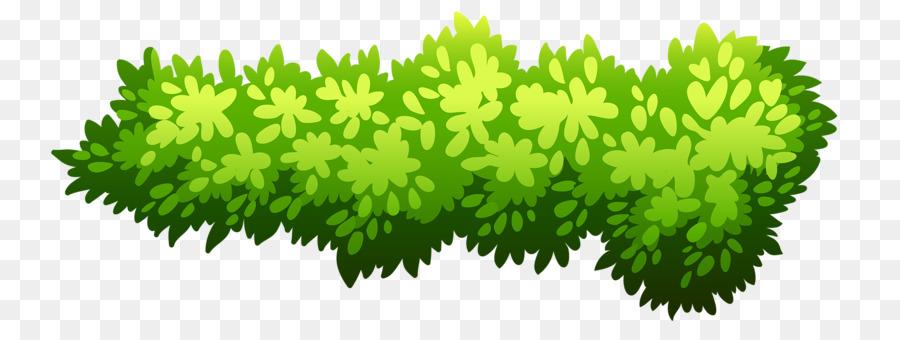 Bushes clipart green bush. Shrub illustration png download