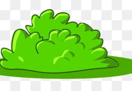 Shrub illustration creative png. Bushes clipart green bush