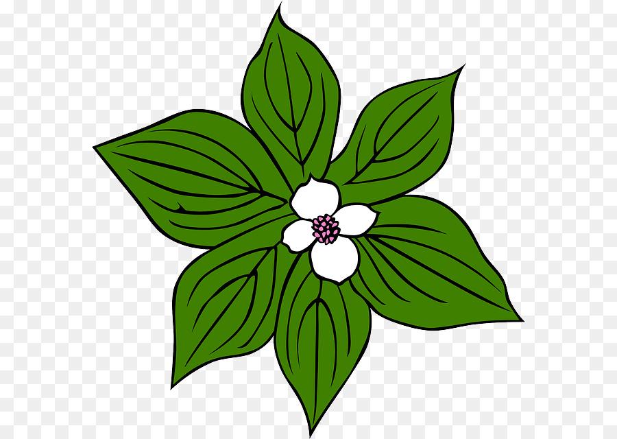 Tropical rainforest plant clip. Bushes clipart jungle