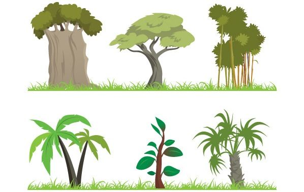 Plants clip art tree. Bushes clipart jungle