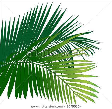Jungle trees clip art. Plants clipart rainforest
