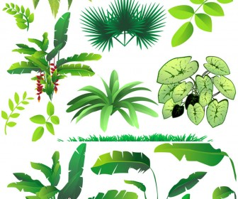 Free plants cliparts download. Bushes clipart jungle