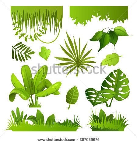 Bushes clipart jungle. Plants drawing at getdrawings