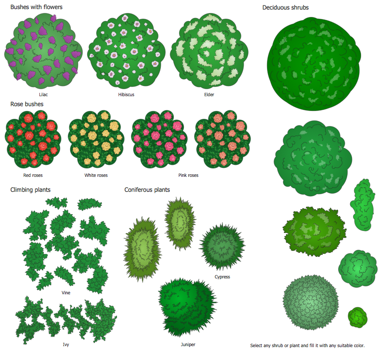 Design elements and trees. Bushes clipart landscape