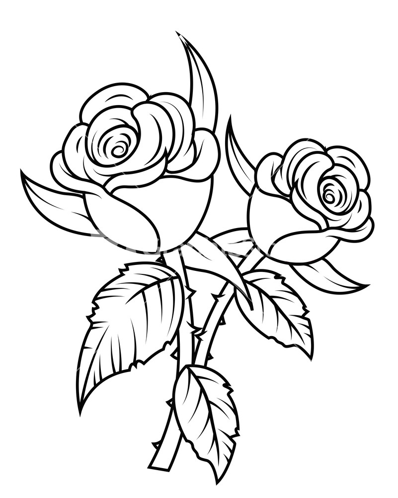 Bushes clipart line drawing. Color free on dumielauxepices