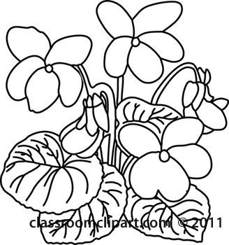 Plants violet flower classroom. Bushes clipart outline