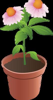 A flower pot my. Bushes clipart paint