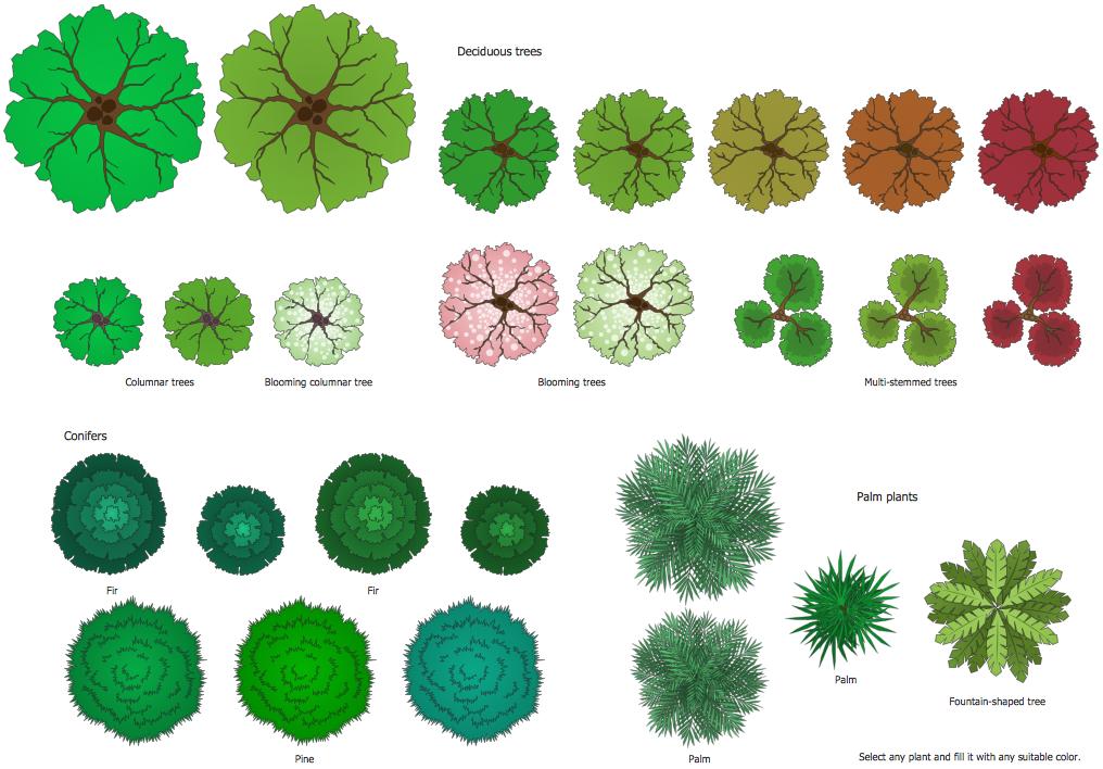 Design elements bushes and. Bush clipart plan
