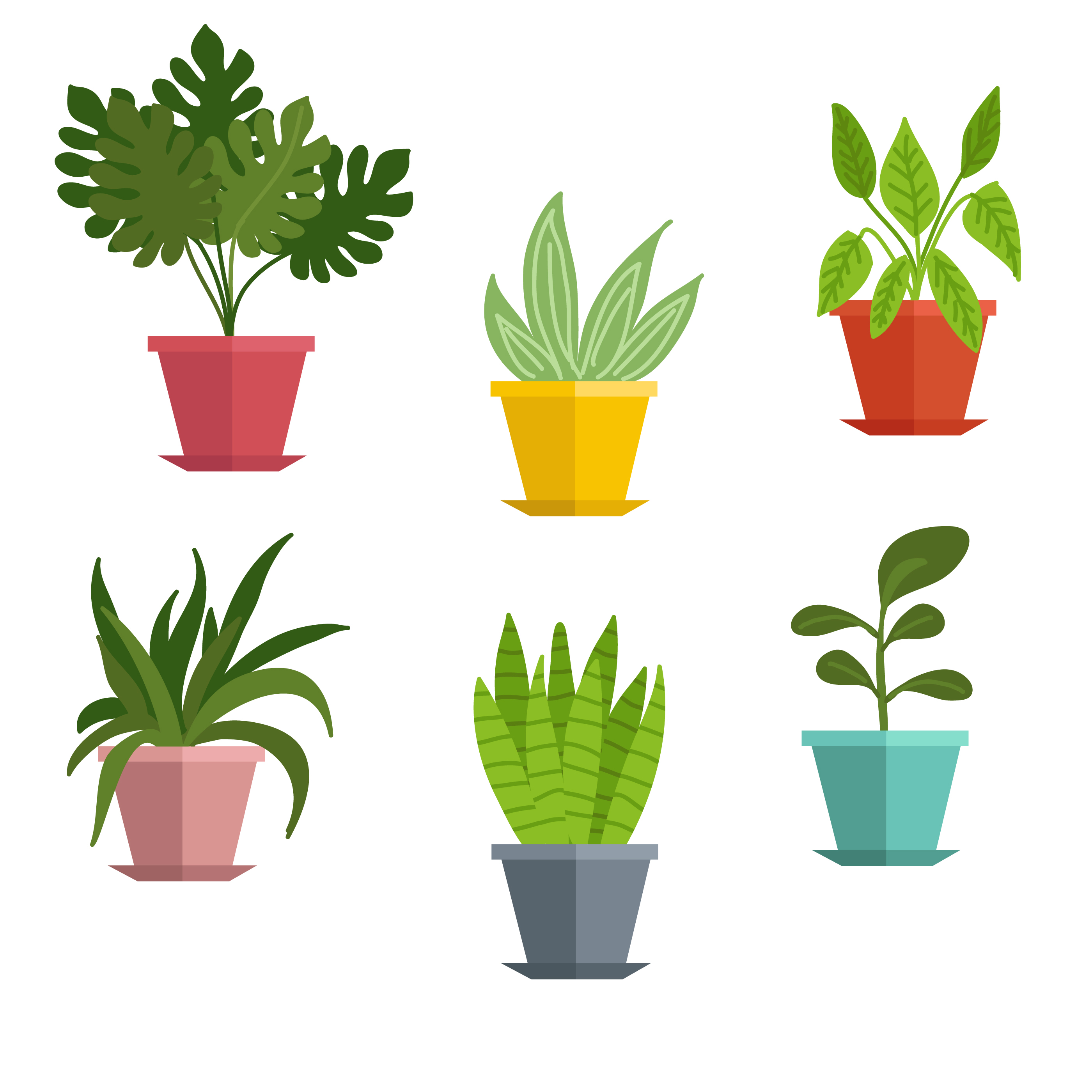 Plants little plant x. Bushes clipart potted