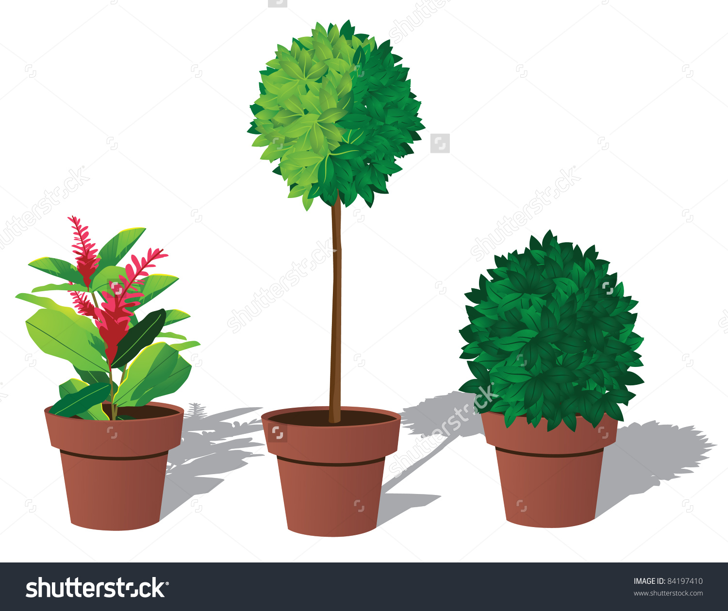 Plants clipground art clip. Bushes clipart potted