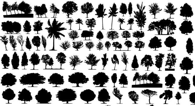 Vector trees silhouettes tree. Bushes clipart silhouette