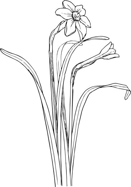 Bushes clipart svg. Flower plant stem bush