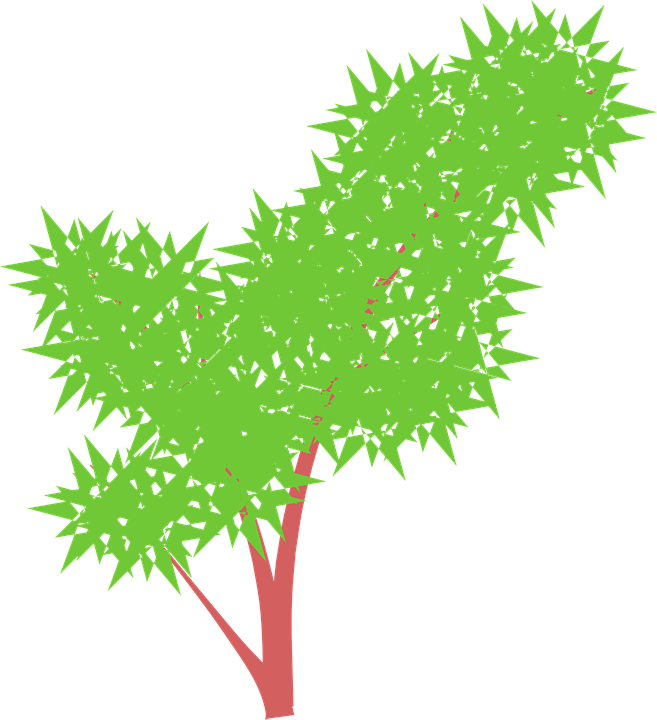 Bush cliparts shop of. Bushes clipart tree