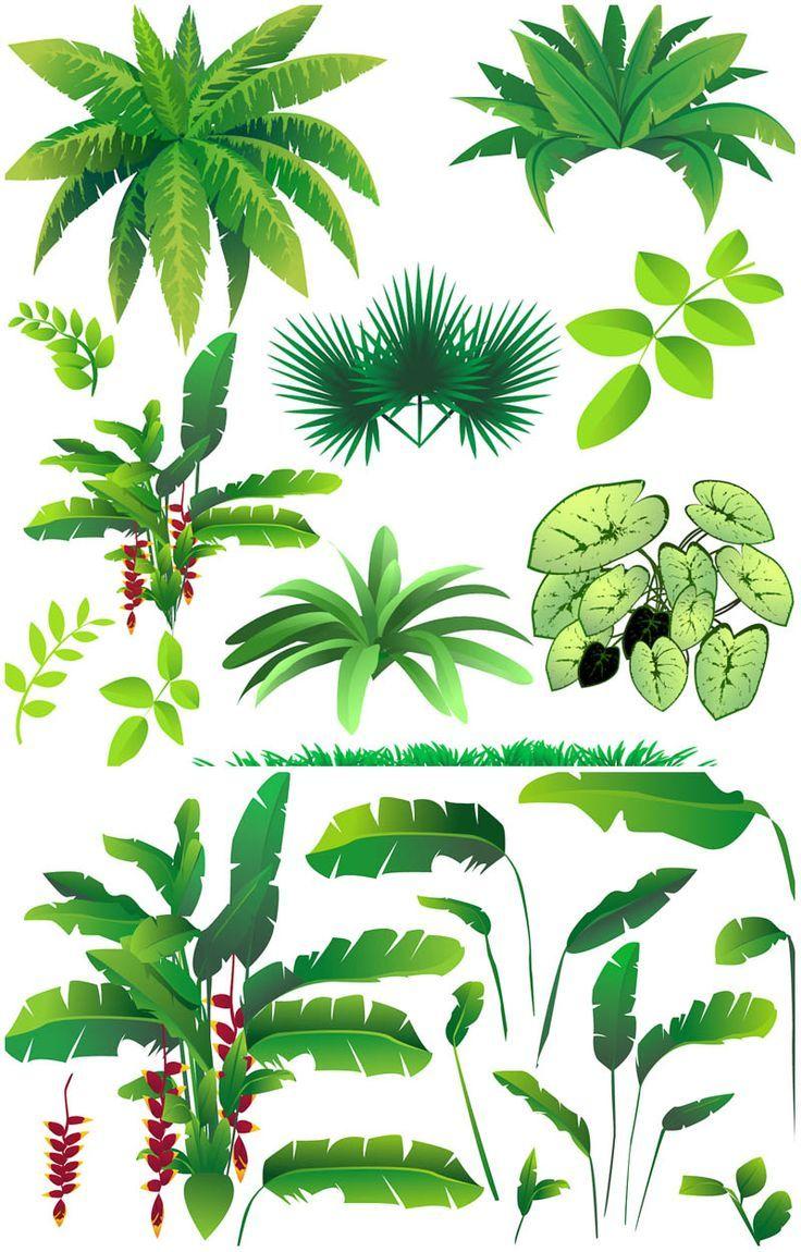 Bushes clipart vector. Rainforest plants graphics blog