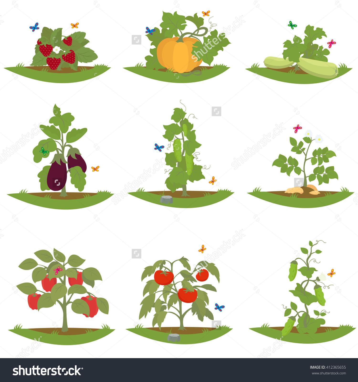 Fruits plants clipground bush. Bushes clipart vector