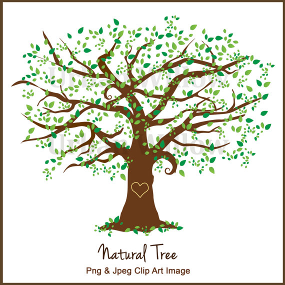 Beautiful design family tall. Business clipart tree