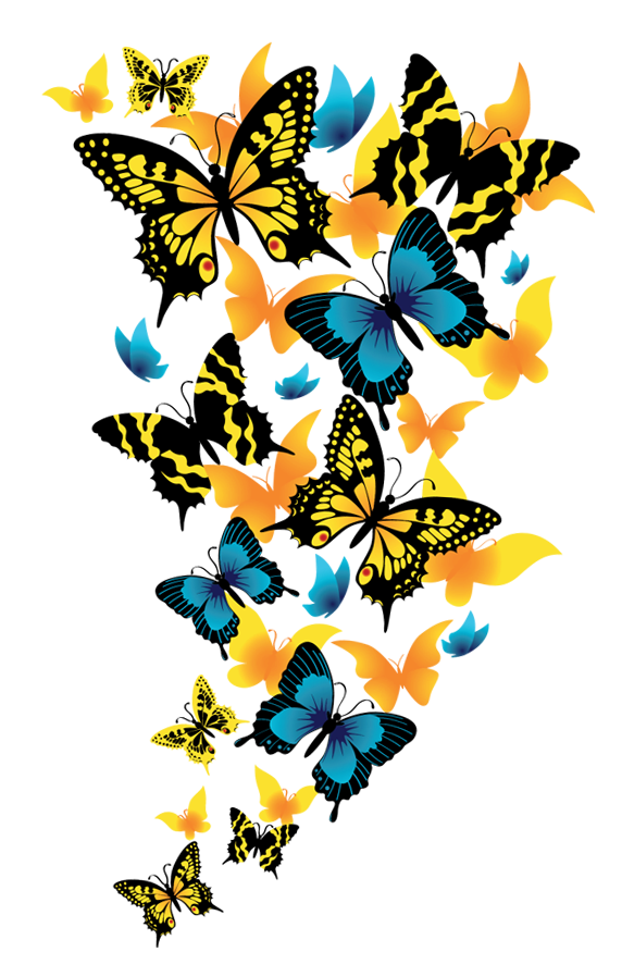 Butterflies picture gallery yopriceville. Clipart butterfly net