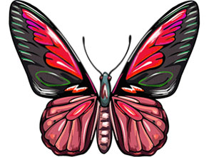 Free animated gifs graphics. Butterfly clipart animation