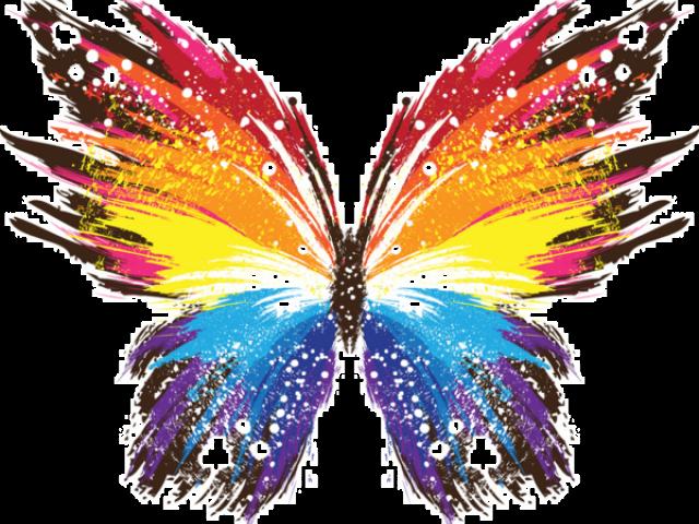 butterflies clipart burgundy