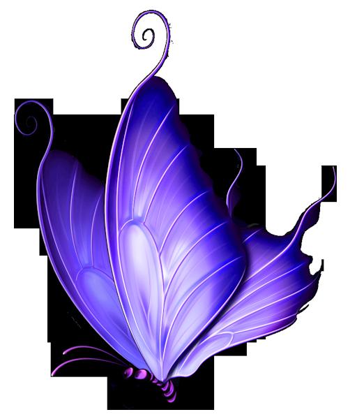 Transparent purple deco png. Vines clipart butterfly
