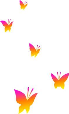 Butterflies clear background