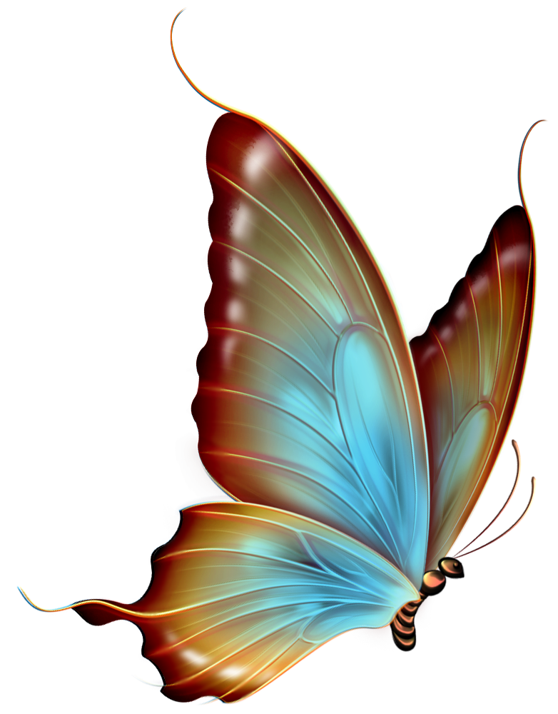 And blue transparent butterfly. Moth clipart brown pink