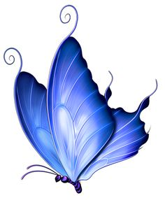 Butterfly clipart dark blue. Pin by lisa anderson