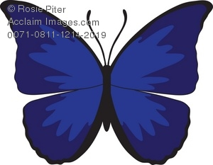 Royalty free illustration of. Butterfly clipart dark blue