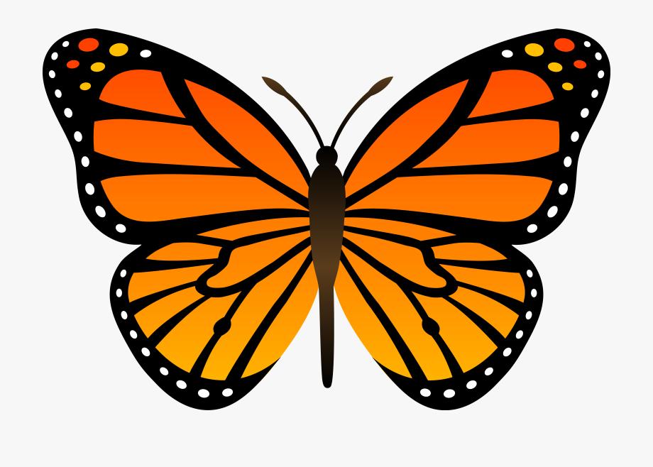 Butterflies clipart easy, Butterflies easy Transparent ...