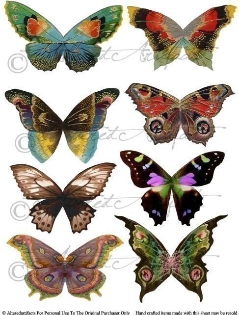 Fantasy fairy wings digital. Butterfly clipart enchanted