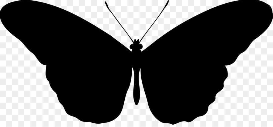 Silhouette clip art png. Butterfly clipart fairy