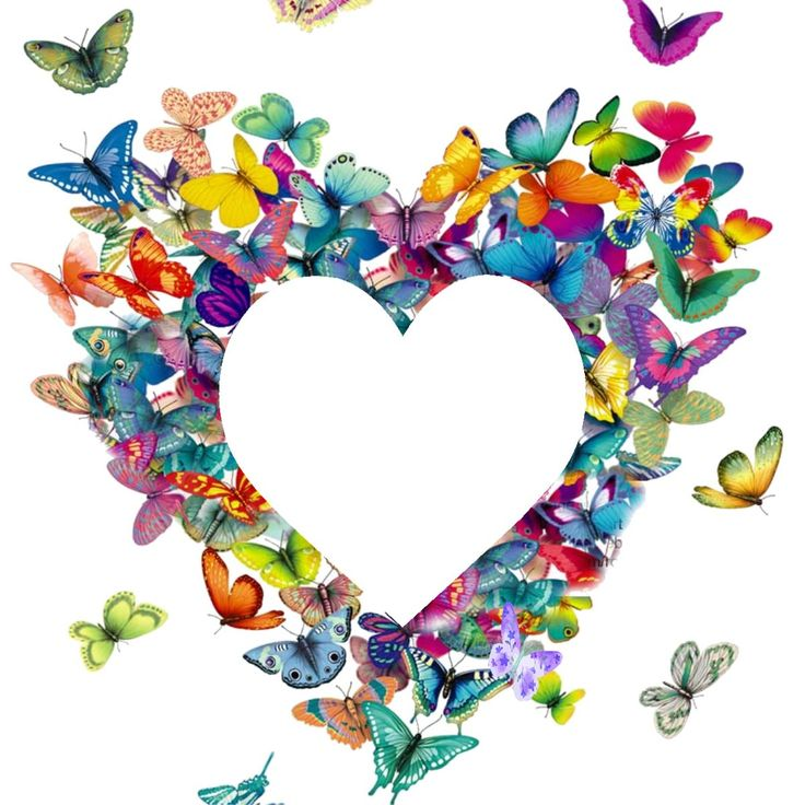 best images on. Butterfly clipart heart