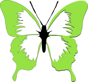 Beautiful in white and. Butterfly clipart light green