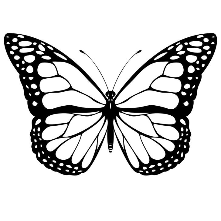 Butterfly clipart black and white. Monarch clip art free