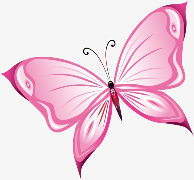 Butterfly clipart magenta. Hand painted pink