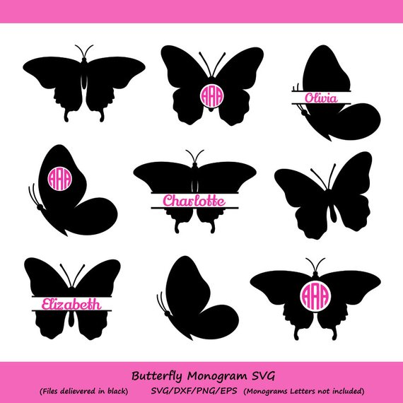 Butterflies clipart monogram. Butterfly svg silhouette frame