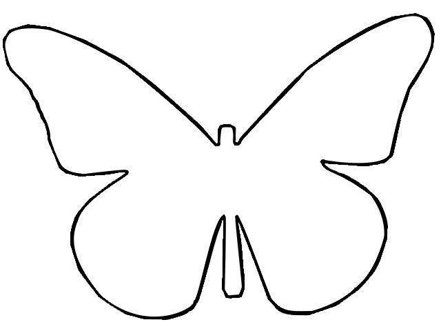 Butterfly clipart plain. Best photos of outline